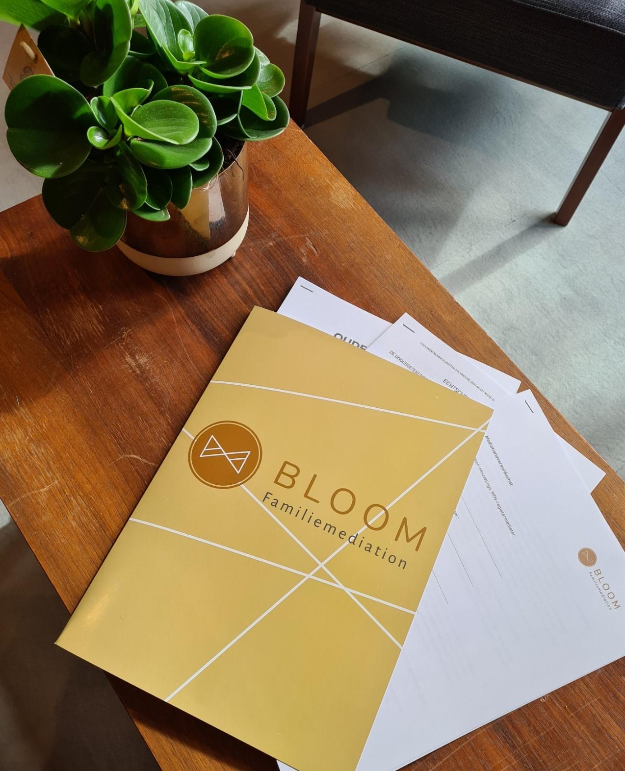 BLOG BY BLOOM: U gaat scheiden: wat nu?